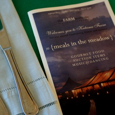 Meals in the Meadow 2013 – The FARM Institute
