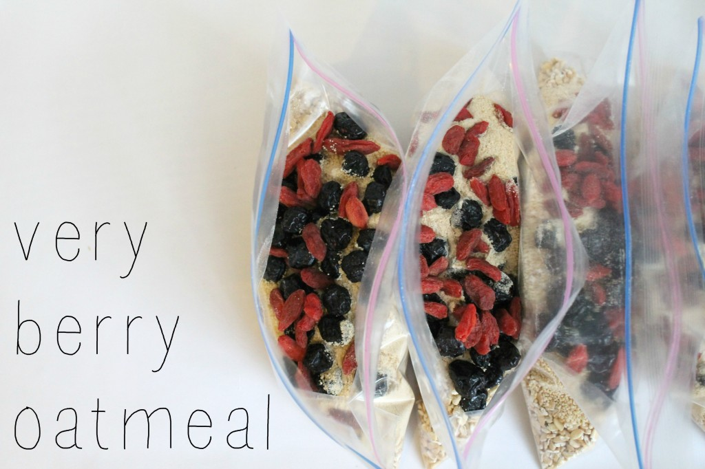 DIY Instant Oatmeal Packets Berries
