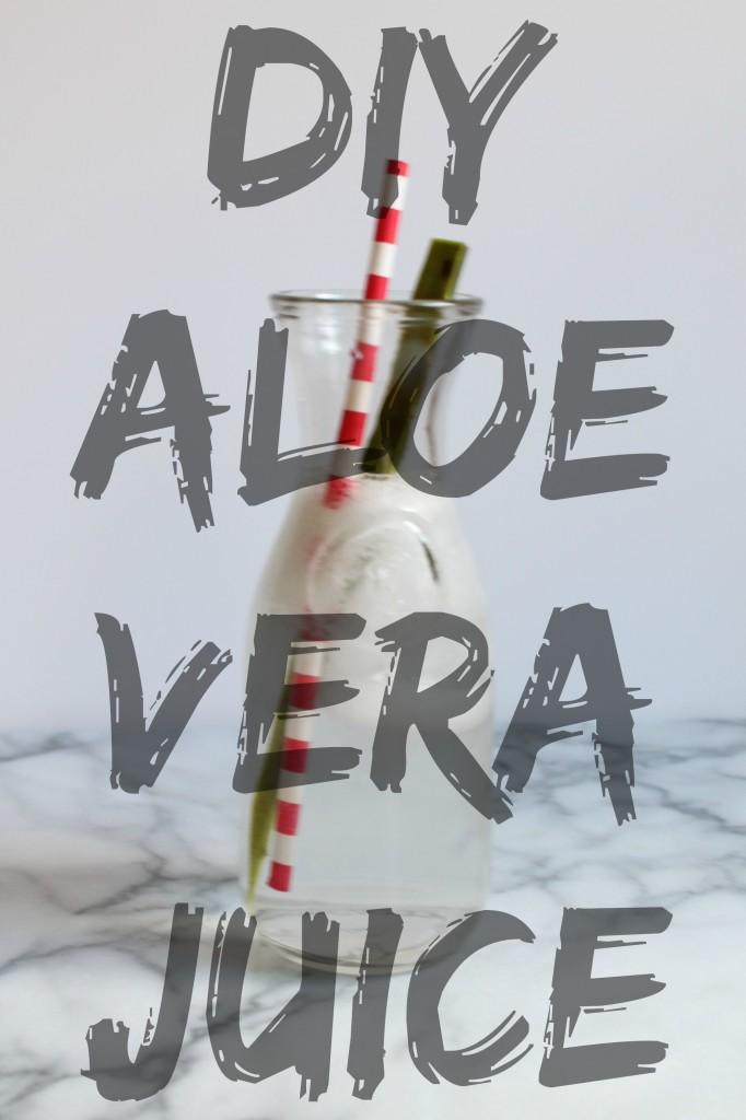 DIY Aloe Vera Juice 05