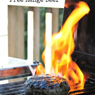 Del Terruño Free Range Beef