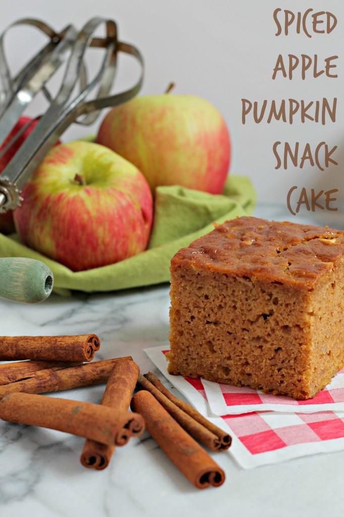 Spiced Apple Pumpkin Snack Cake 3