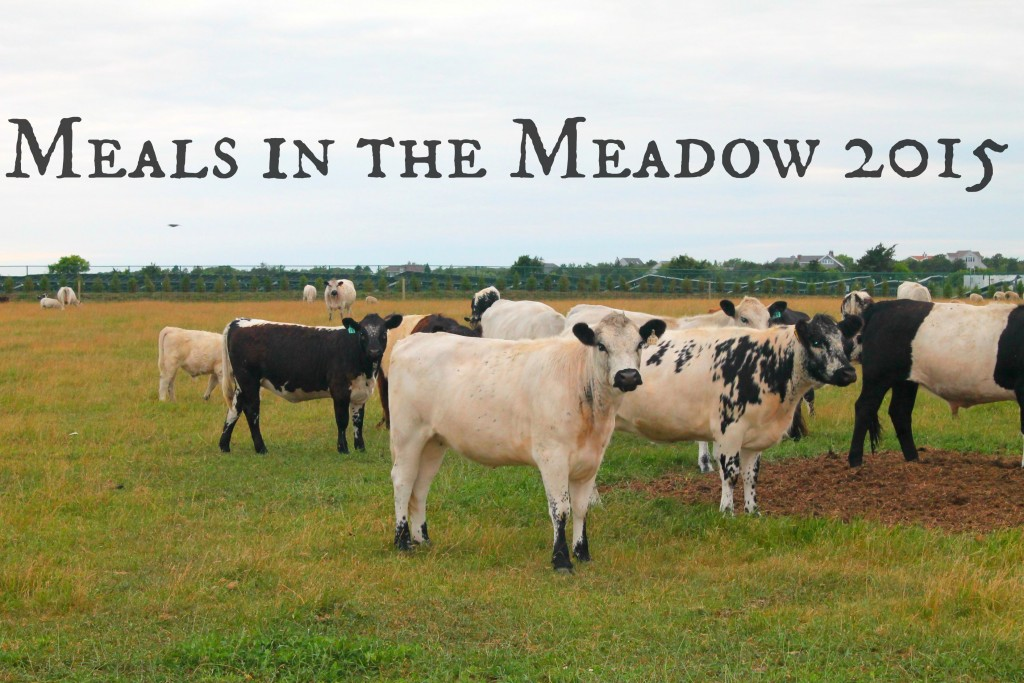 Meals in the Meadow 2015