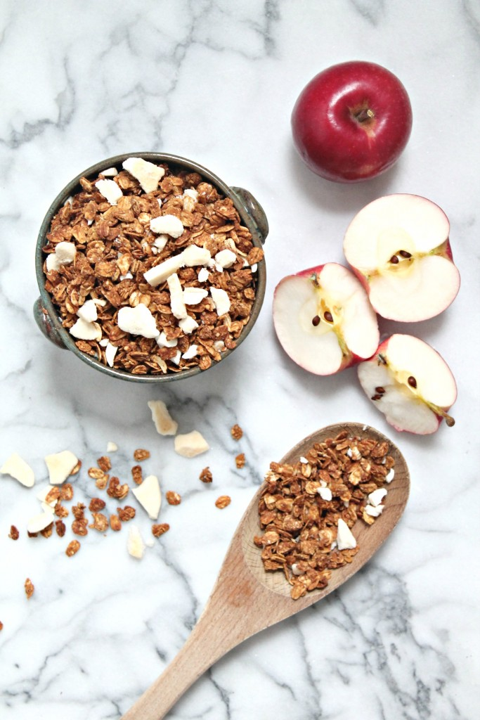 Apple Cinnamon Granola Recipe \\ Get the recipe for this homemade, healthy snack on CookingWithBooks.net