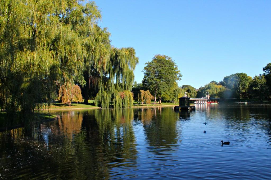 boston-fall-guide-2016-05