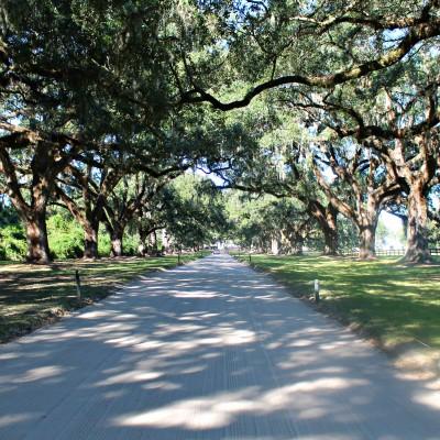 Foodie Guide to Charleston, South Carolina