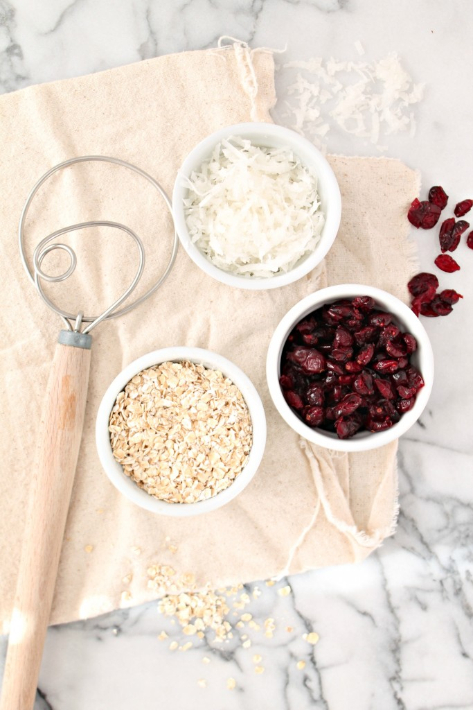 Cranberry Coconut Oat Bars 03