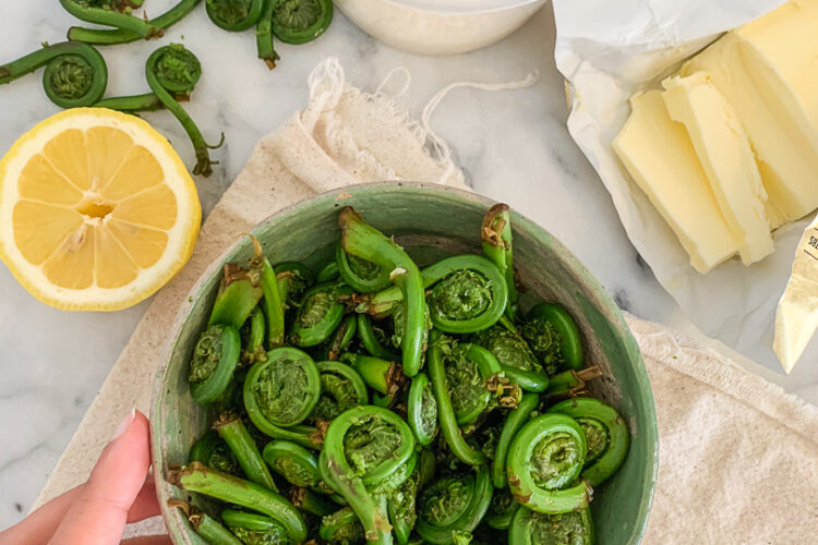 Creamy Lemon Fiddlehead Pasta