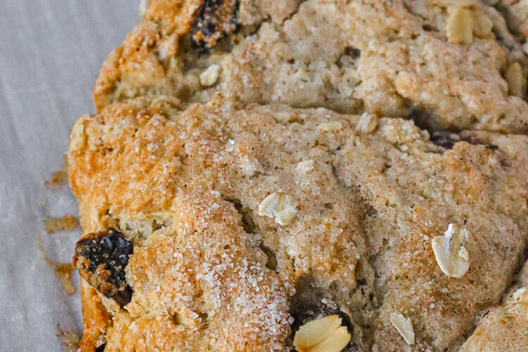 close up of Cherry studded oatmeal scones cut into six slices
