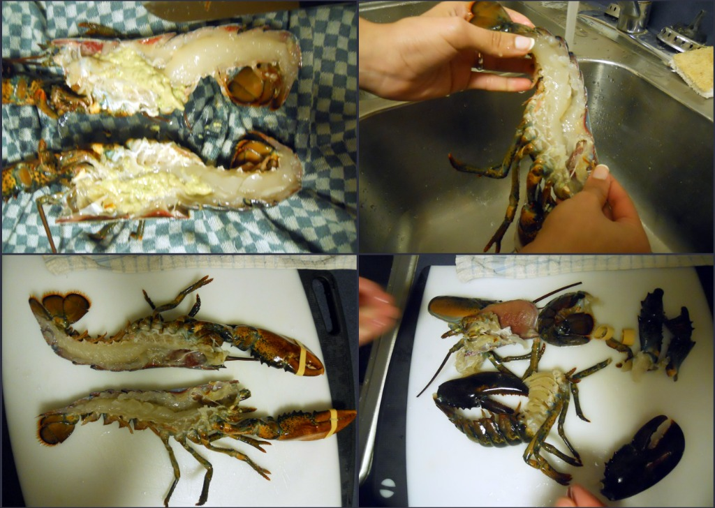 How to Kill a Lobster 101 & Poached Lobster recipe ...