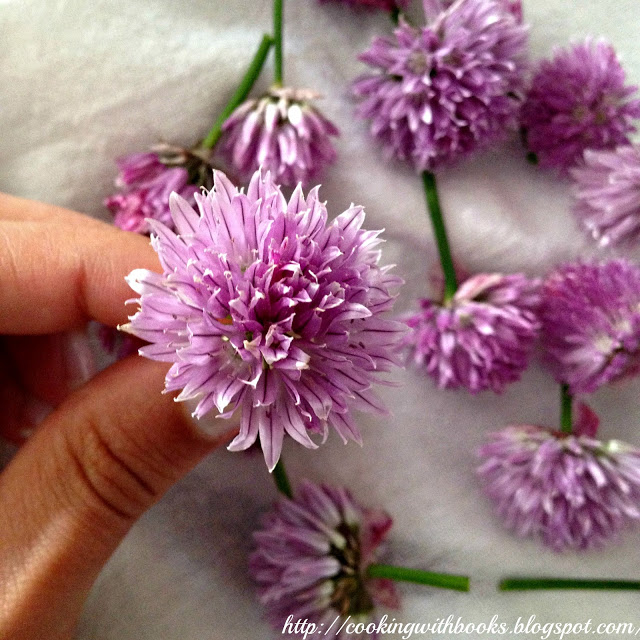 Learn how to make Chive Blossom Vinegar - A delicious, fragrant vinegar that can be used to make salad dressings or for pickling/preserving.